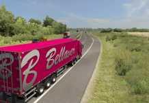 Euro Truck Simulator 2 - Promods 2.46 - Bellaver Transportes HD